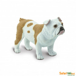 Bulldog - Safari