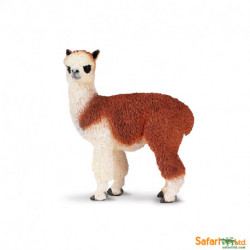 Alpaca - Safari